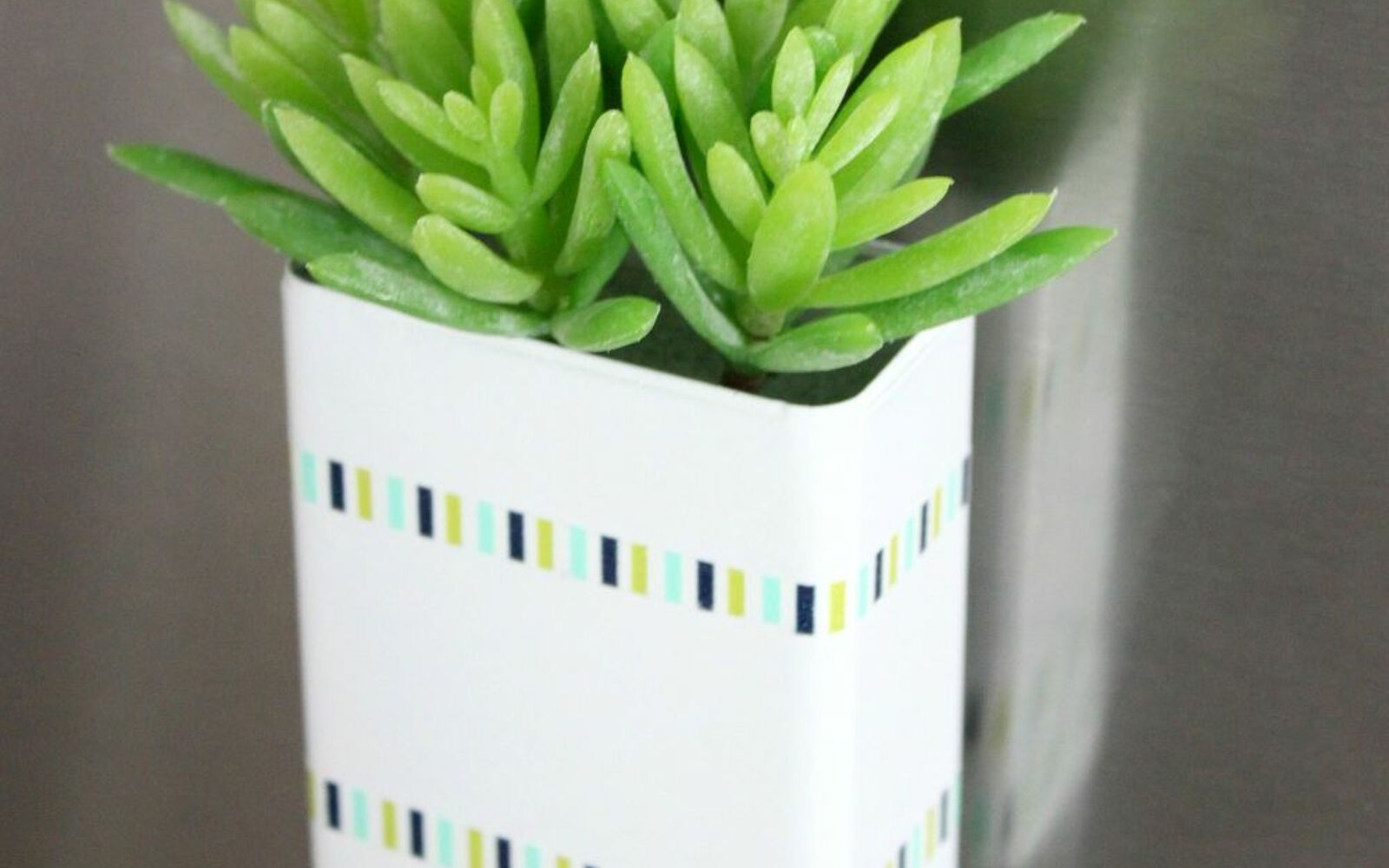 s the 15 tiniest succulent ideas we ve ever seen, flowers, gardening, succulents, This faux succulent magnet from a spice can