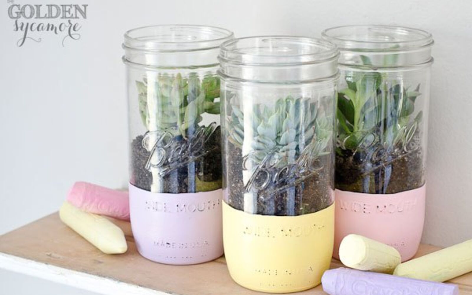 s the 15 tiniest succulent ideas we ve ever seen, flowers, gardening, succulents, These light chalky succulent jars