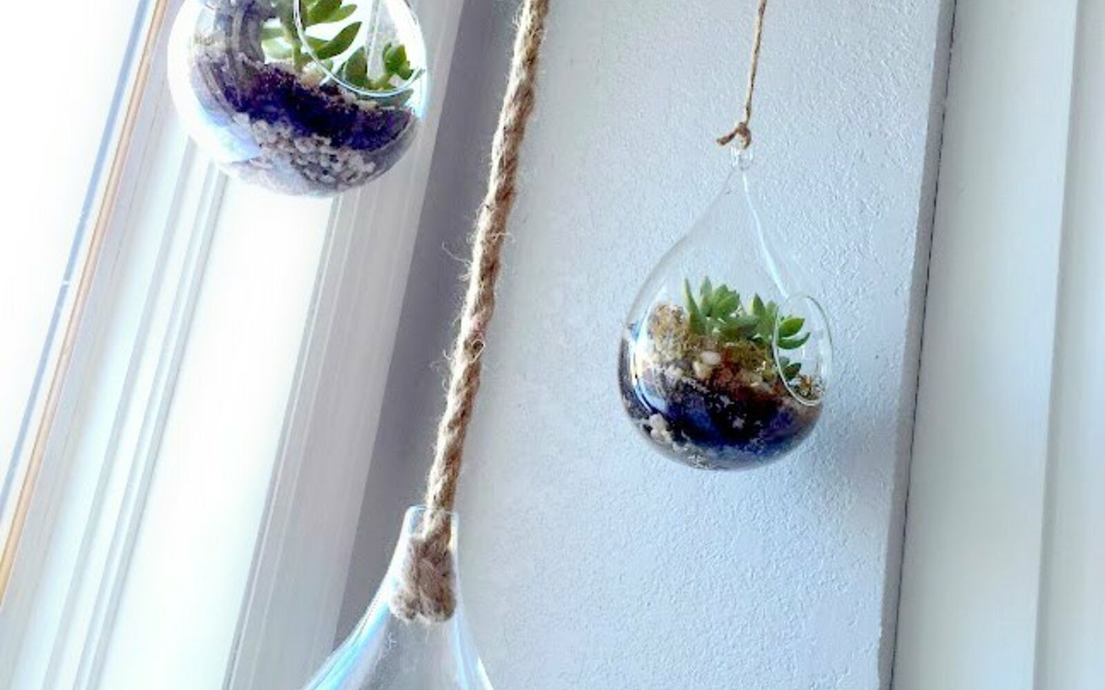 s the 15 tiniest succulent ideas we ve ever seen, flowers, gardening, succulents, These hanging planter globes