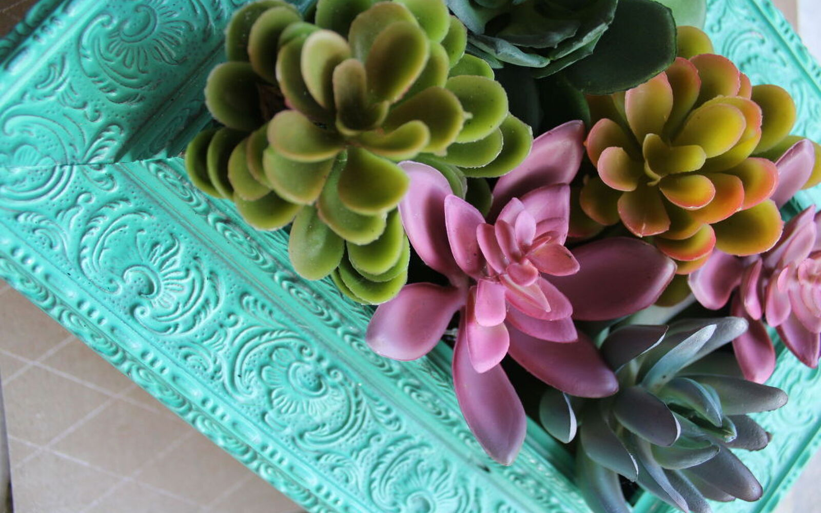 s the 15 tiniest succulent ideas we ve ever seen, flowers, gardening, succulents, This faux succulent garden in a frame