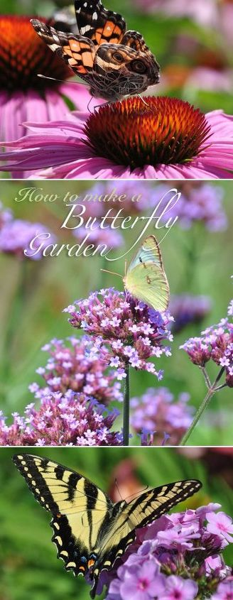 how to create a butterfly garden, gardening, how to