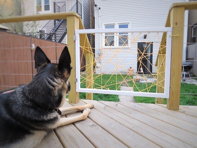 diy a super hip dog gate, diy, pets, pets animals, woodworking projects