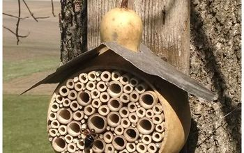 bee bug house gourd diy, crafts, gardening, outdoor living