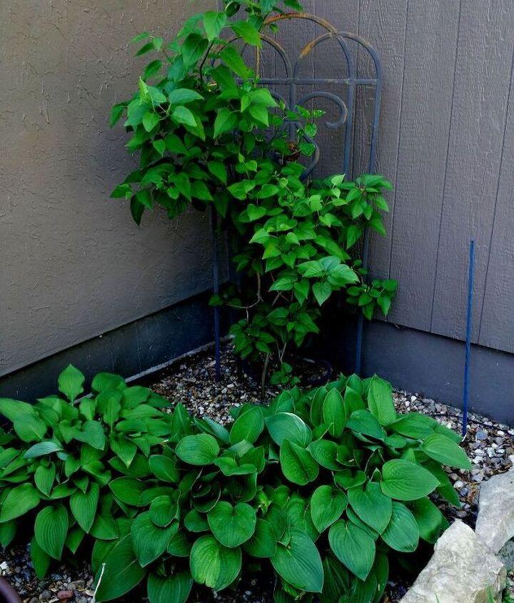 extended gardening 2016 lakeside gardening, gardening, outdoor living