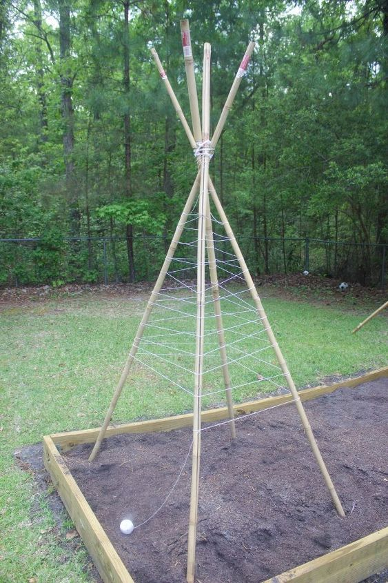 how to build a bamboo pole bean teepee frame, gardening, how to, outdoor furniture, outdoor living, raised garden beds