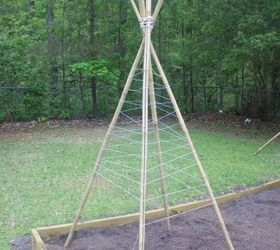 How To Build A Bamboo Pole Bean Teepee Frame, Gardening, How To, Outdoor