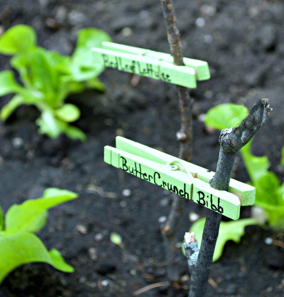 12 Adorable Plant Markers From Your Junk Drawer Hometalk