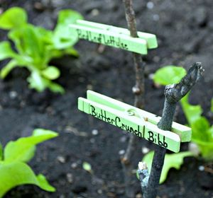 s 12 adorable plant markers from your junk drawer, gardening, repurposing upcycling