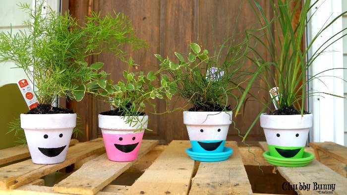 silly painted terra cotta pots, container gardening, crafts, gardening, how to