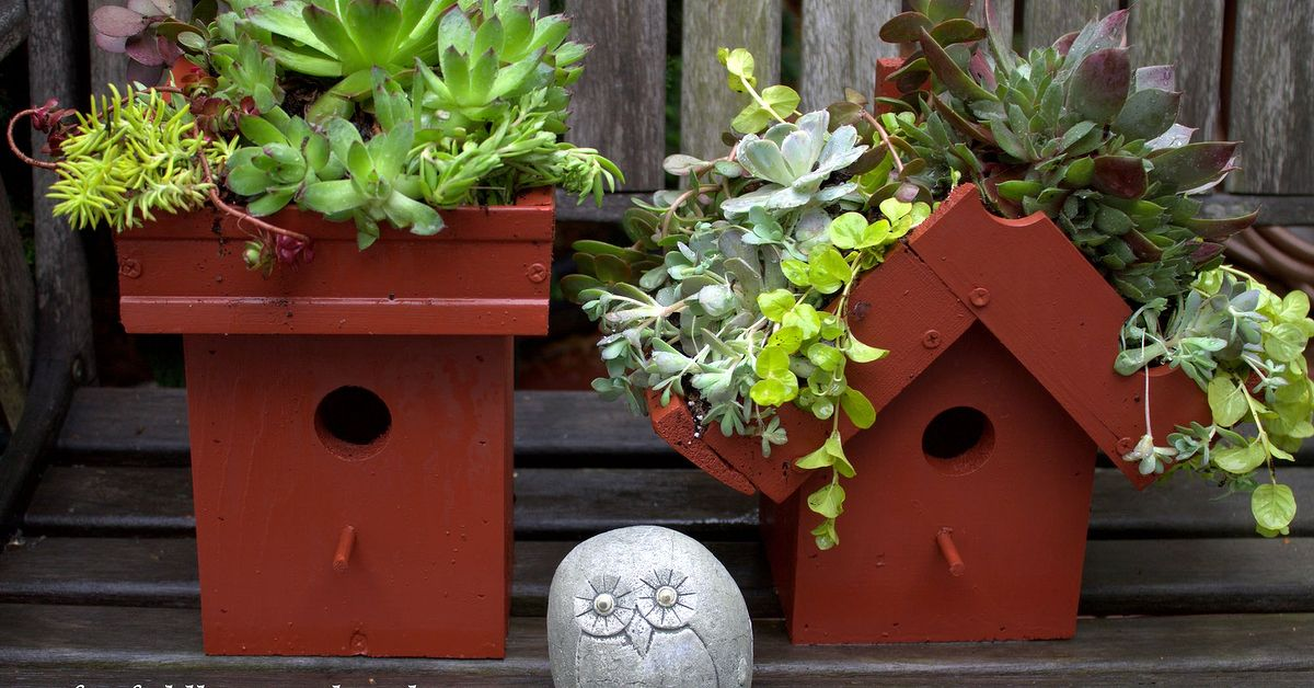 Easy diy green roof birdhouses hometalk for Diy bird house