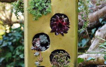 Gardening Project: Recycled Succulent Planter