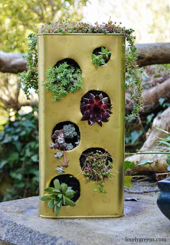 gardening project recycled succulent planter, container gardening, gardening, repurposing upcycling, succulents