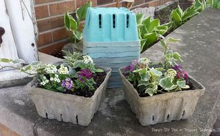 concrete dipped berry box planters , concrete masonry, container gardening, crafts, diy, gardening, how to, repurposing upcycling