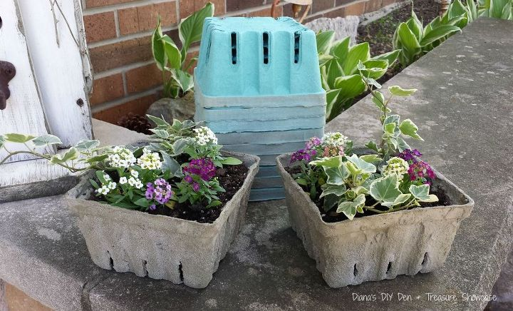 Cement Container Planters : Concrete dipped berry box planters hometalk