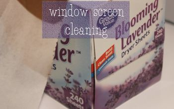 Window Screen Cleaning Tip