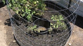 , The bucket is 1 2 full of water it will stay full anywhere from 30 to 48hrs Is this okay Not enough holes or just over watering or is it even maybe perfect