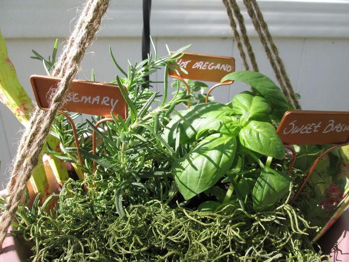 hanging strainer herb basket, container gardening, crafts, gardening, repurposing upcycling