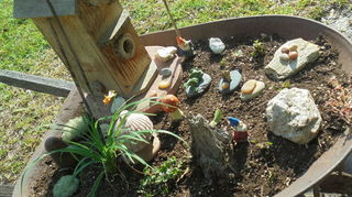, Non serviceable wheelbarrow used to make a gnome residence using dollar store figurines and items from around the house Used small leaf plants and sedum to complete the greenery