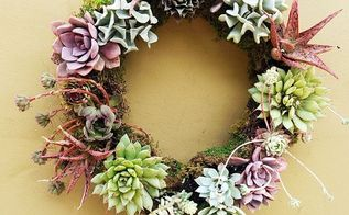 5 easy steps to making a living succulent wreath, crafts, flowers, gardening, how to, succulents, wreaths