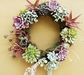 5 Easy Steps To Making A Living Succulent Wreath, Crafts, Flowers,  Gardening,