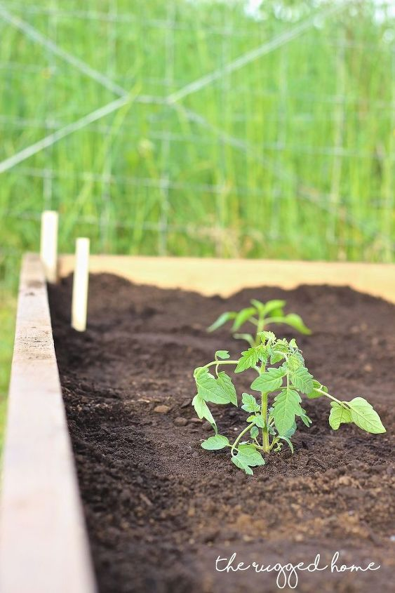 raised garden beds easiest cheapest, container gardening, gardening, how to, landscape, outdoor living, raised garden beds, woodworking projects