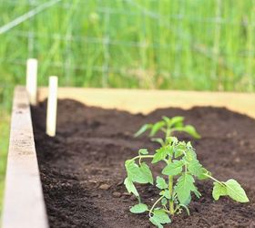 Raised Garden Beds Easiest Cheapest, Container Gardening, Gardening, How  To, Landscape,