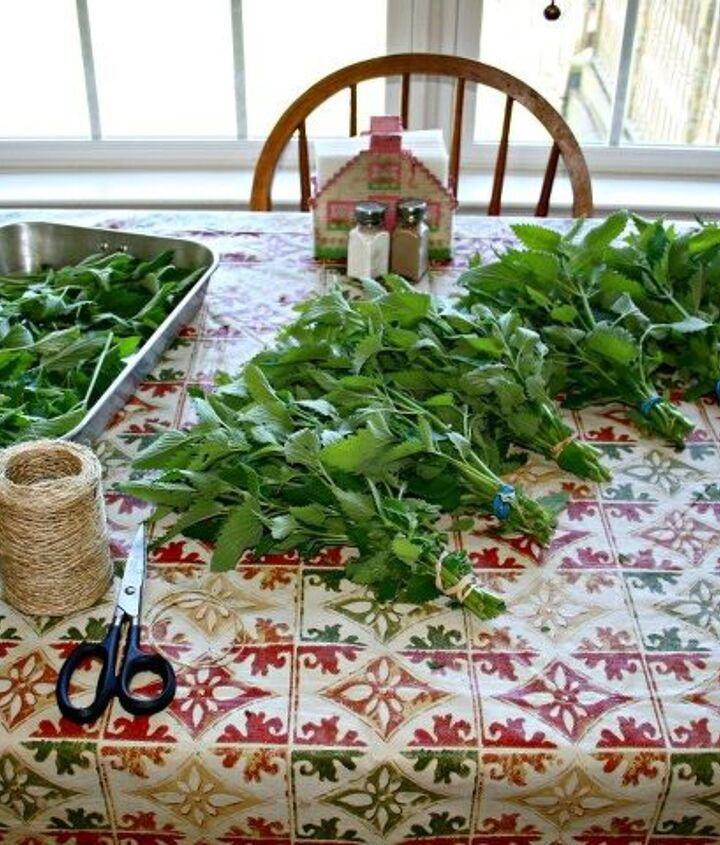 diy solar herb drying methods, gardening, how to