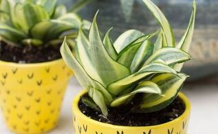 pineapple flower pots, container gardening, crafts, gardening