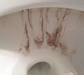 Removing Nasty Toilet Stains, Bathroom Ideas, Cleaning Tips