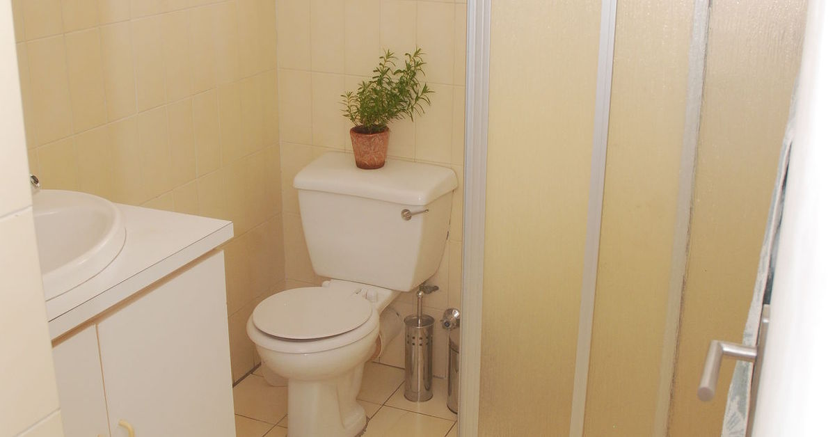 Has anyone painted bathroom tiles successfully? | Hometalk