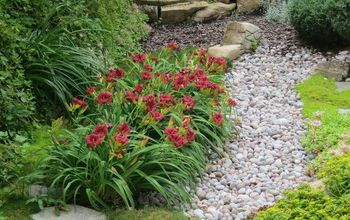 Low Maintenance Gardening (Part 1): Dry Creek Bed