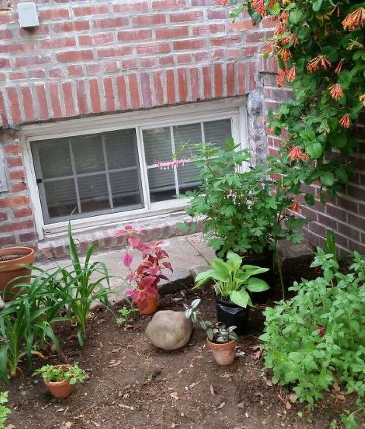 Place potted plants in tentative spots