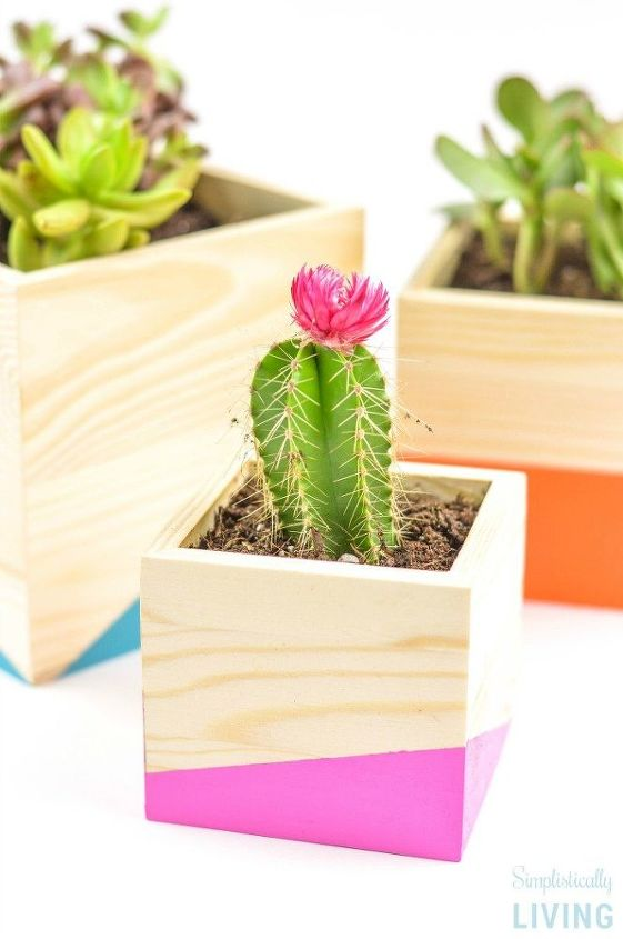 color block wood planter, container gardening, crafts, gardening, how to