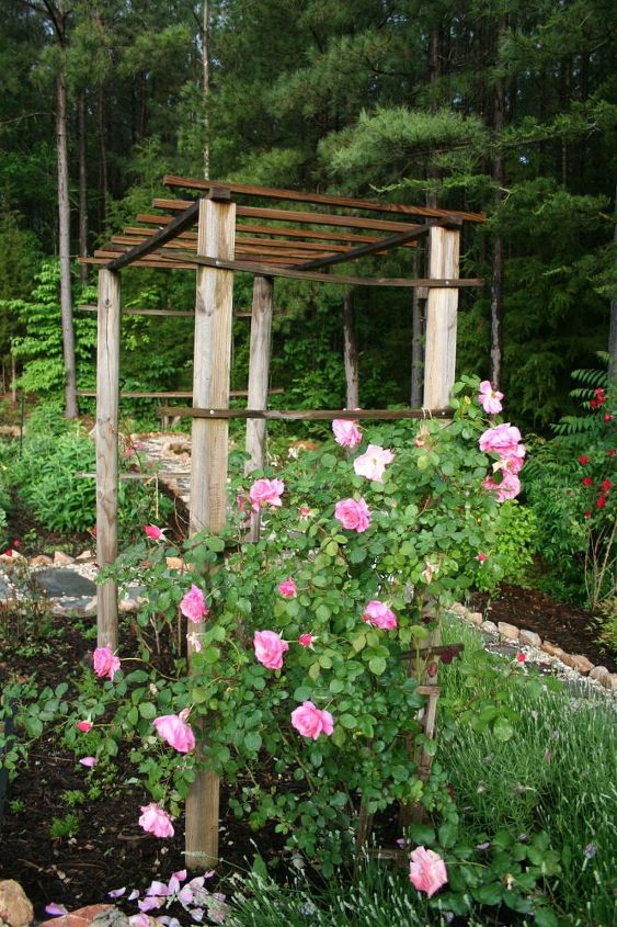 17 Ways To Build A Gorgeous Garden Trellis This Summer