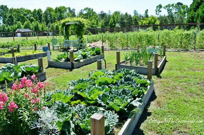 s 13 easiest ways to build a raised vegetable bed in your garden, gardening, Build low wood boxes with tall posts