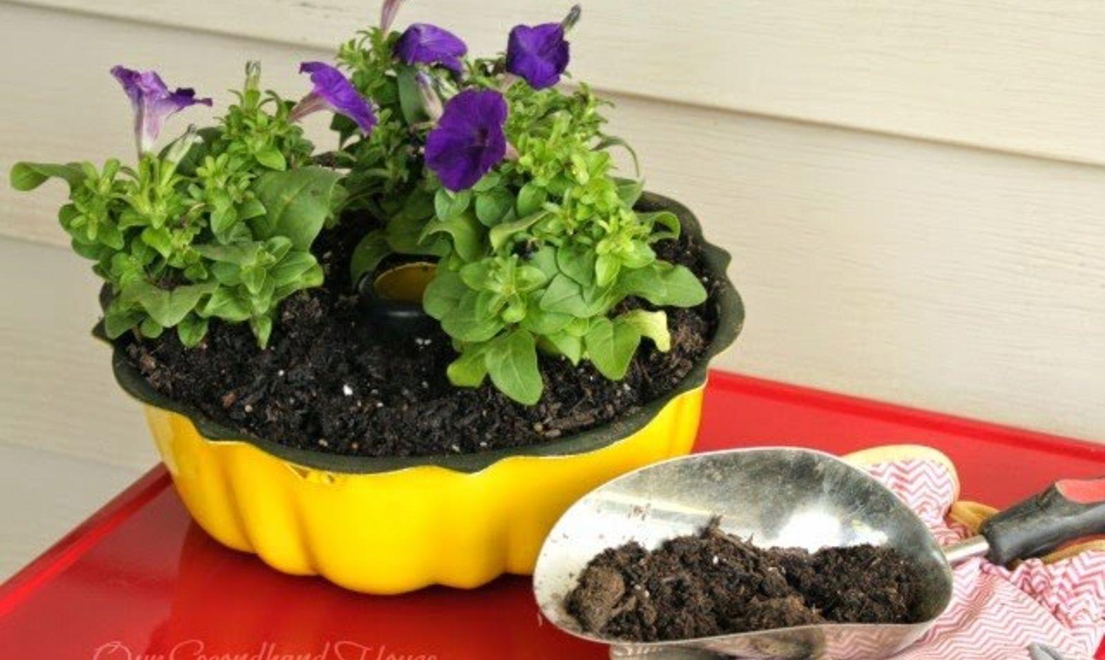 container gardening for beginners. Start Slideshow Container Gardening For Beginners
