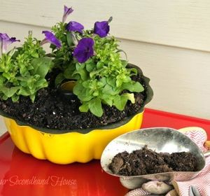 s 20 low maintenance container gardens for beginners, container gardening, gardening