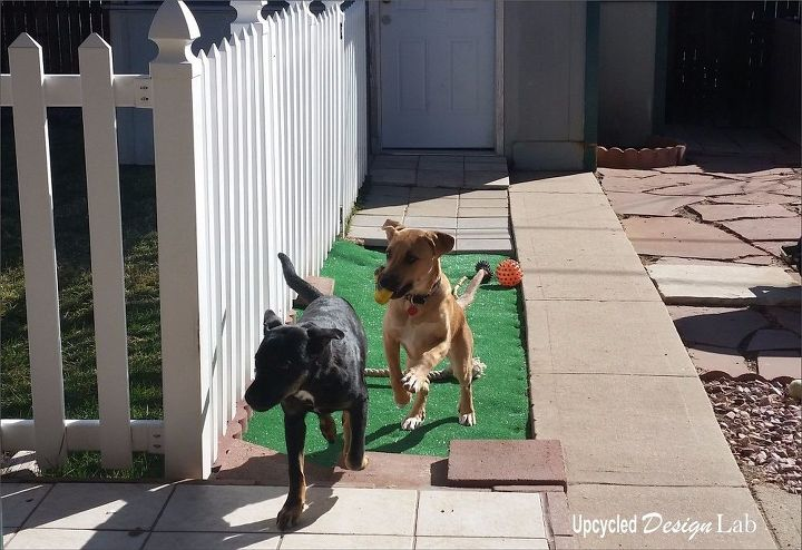 dirt patch to puppy patio easy diy, landscape, lawn care, pets, pets animals