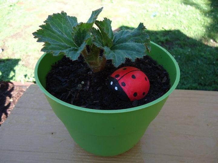 ladybug garden decoration, crafts, diy, gardening, how to
