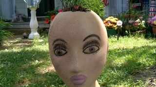 , This girl got spray painted too close and got bumps on one side I used foundation makeup and eye makeup blush and lipstick She has asparagus fern as her Mohawk I ll be used PVC pipe to show them off in my front yard