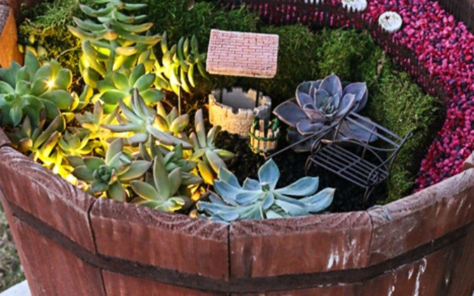 s 17 insanely fun ways to display your favorite succulents, flowers, gardening, succulents, Make a glowing gorgeous fairy garden