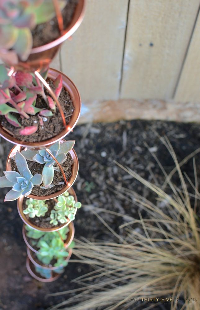 17 Insanely Fun Ways To Display Your Favorite Succulents