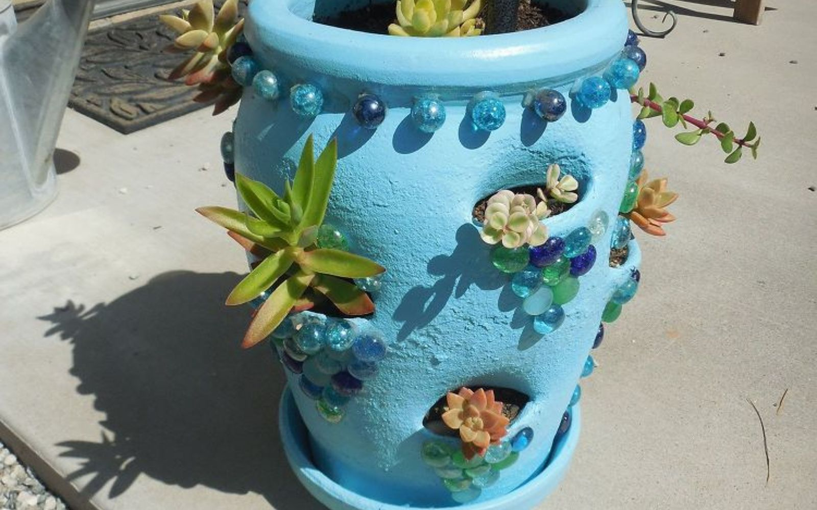 s 17 insanely fun ways to display your favorite succulents, flowers, gardening, succulents, Use a strawberry pot as a peek a boo planter