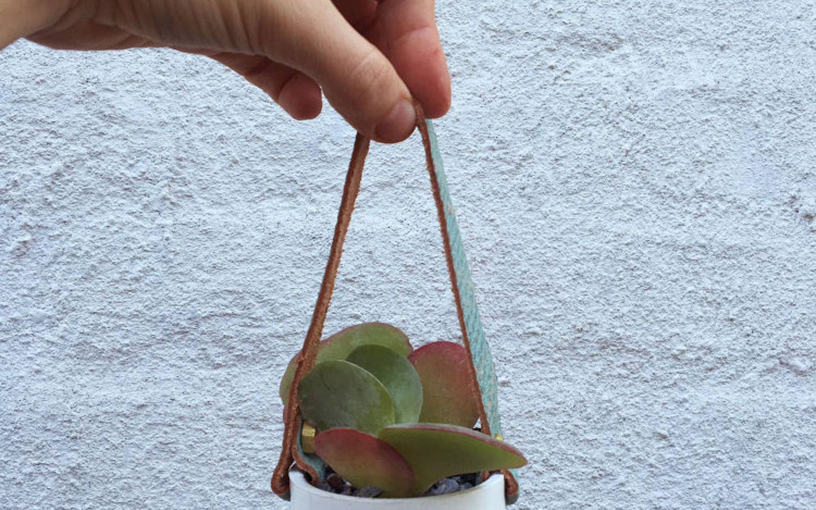 s 17 insanely fun ways to display your favorite succulents, flowers, gardening, succulents, Turn a PVC cap into a tiny hanging planter