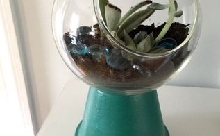 gumball machine terrarium, crafts, gardening, how to, repurposing upcycling, succulents, terrarium