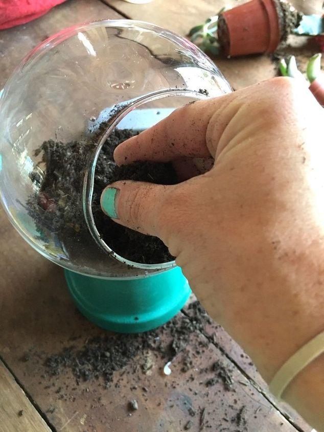 gumball machine terrarium, crafts, gardening, how to, repurposing upcycling, succulents, terrarium