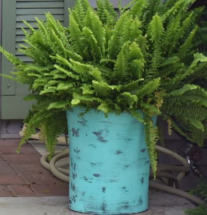 DIY Large Planters... From Trash Cans!   Hometalk