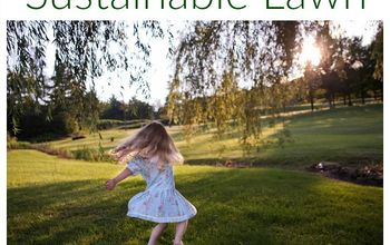 how to maintain a sustainable lawn, go green, how to, lawn care