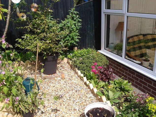 Cheap Attractive Garden Border Edging Hometalk - Diy concrete garden edging
