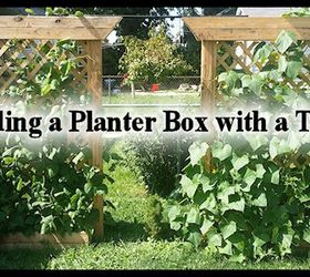 Building A Planter Box With A Trellis, Container Gardening, Diy, Gardening,  Go